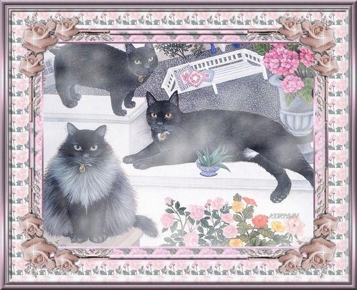 Les Chats Noirs Ne Portent Pas Malheur
